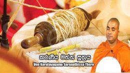 කරණීය-මත්ත-සූත්රය-ven-koralayagama-saranathissa-thero